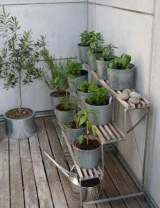 Jak zrobić ziołowy ogród na balkonie?